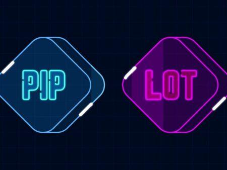 Pip và Lot là gì